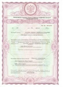 Лицензия на цв. лом стр. 1